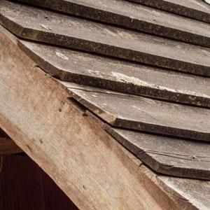Sawn Timber Image