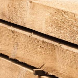 Logs & Timber
